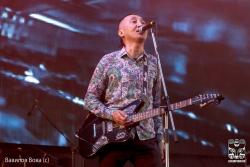 "24 июня 2016. Пермь, фестивале ""Rock - Line"""